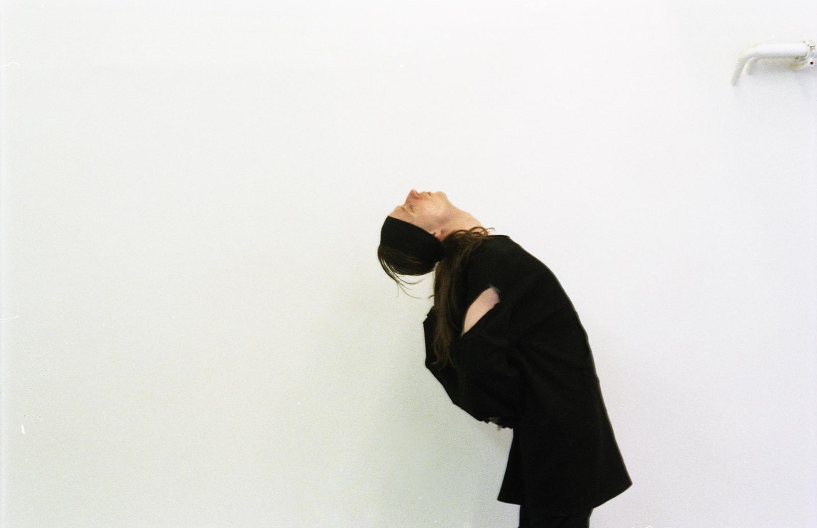 Maturitní práce 2017 <br> Skrytý portrét
