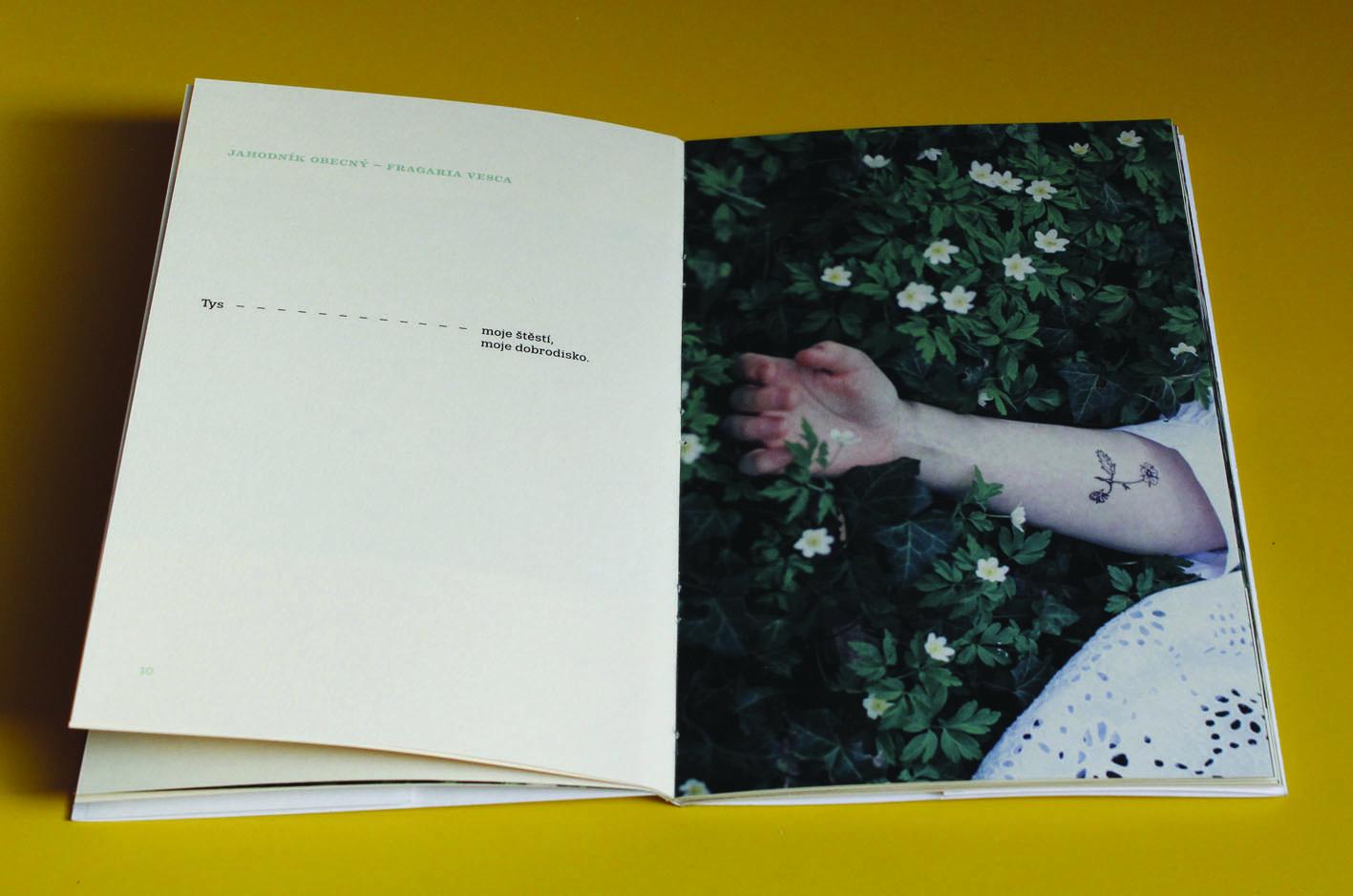 autorská kniha — O čem mluví květiny<br> ukázka dvoustran<br> maturitní práce | 4.ročník