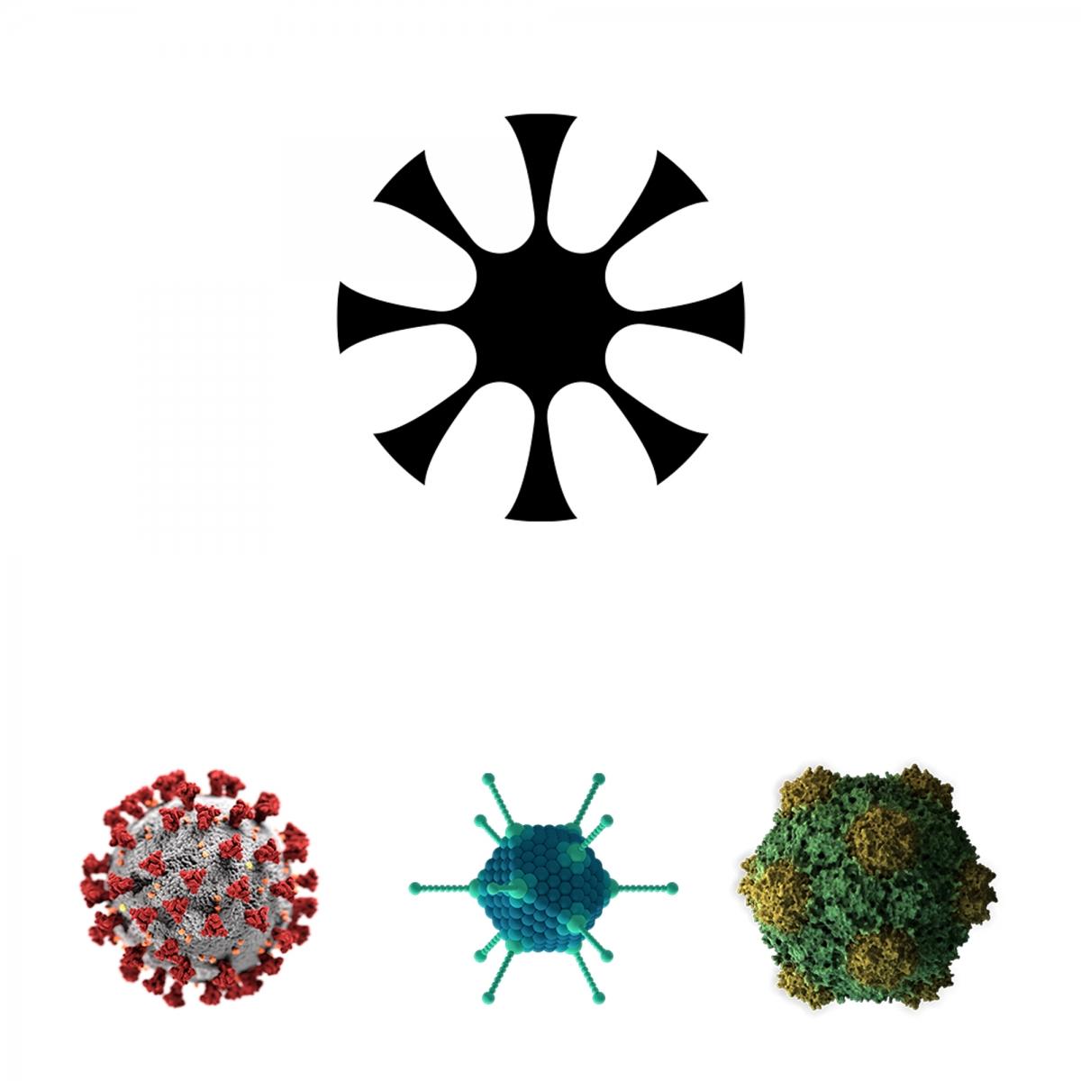 vizuální styl aplikací pro <br>potřeby pandemie Covid-19<br> klauzurní práce | 1.ročník<br> 2019/20 G1A 01