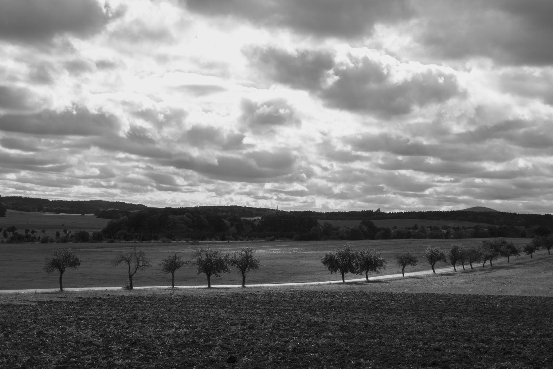 krajina<br>fotografické cvičení   2. ročník 2020