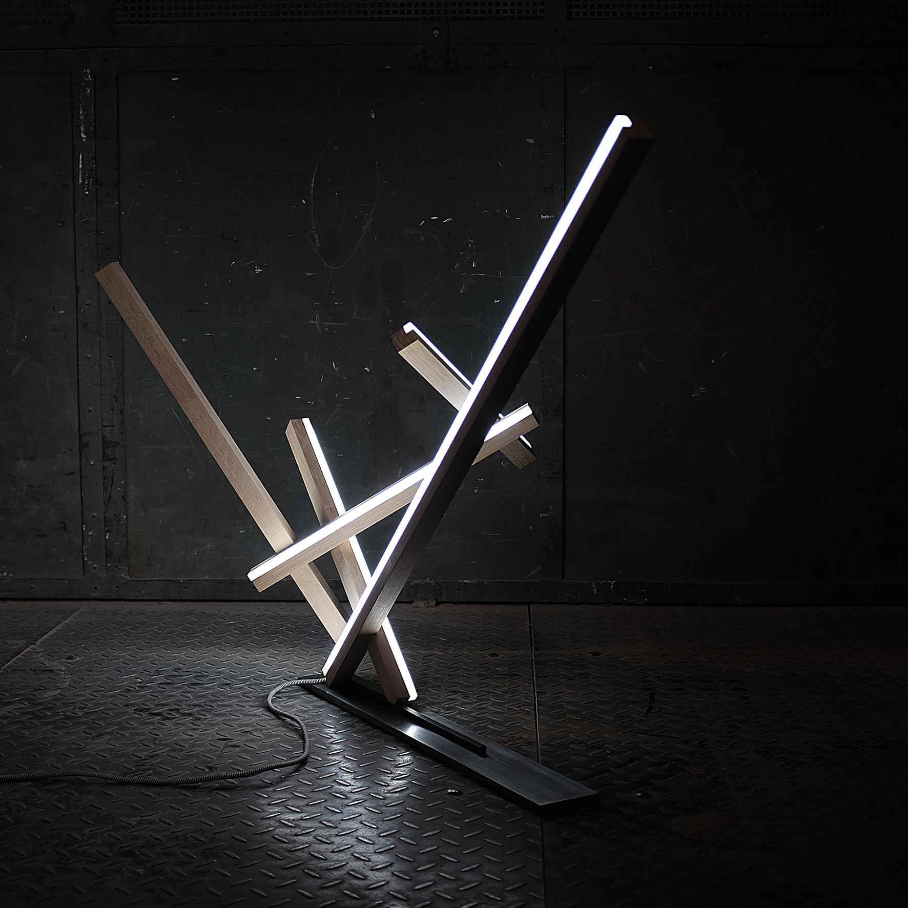 cena asociace 1. místo<br><br>01 Produktový design<br>interiérový objekt<br>Světelný objekt určený do interiéru<br>VOŠUP aSUPŠ, Praha 3<br>pedagog: MgA. Richard Pešek